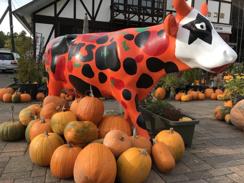 かぼちゃと牛